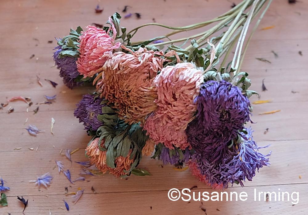 Tørrede sommerblomster